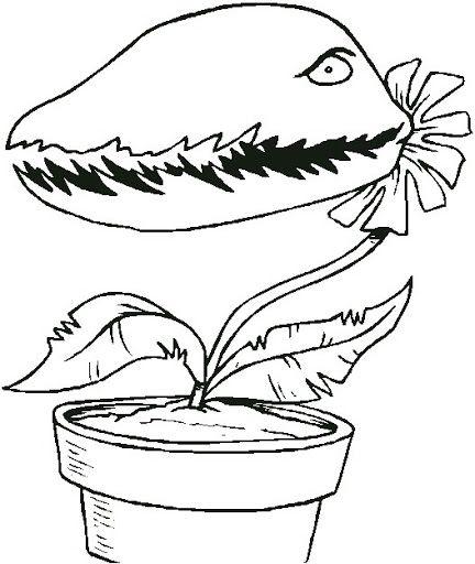 Dibujos de plantas carnivoras para niños - Imagui