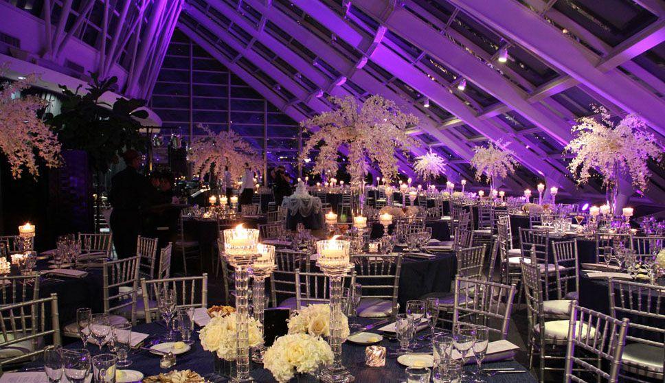 adler planetarium wedding capacity