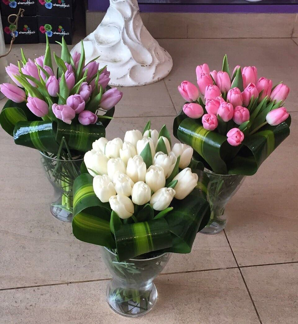 Flower 400 Dhs Aster Flower Al Wasel 0508680753 Shopping Mydubai Knock Oncoti Dubaishopping Aster Flower Flowers Dubai Shopping