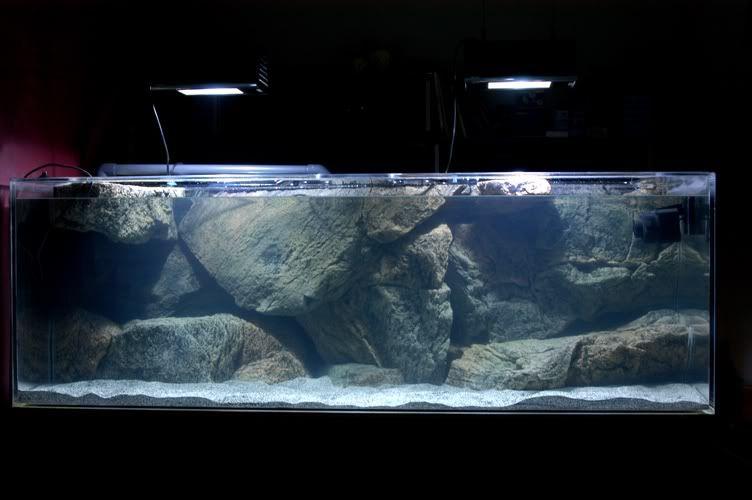 Btn Moduleilla Tehtya Aquaristik