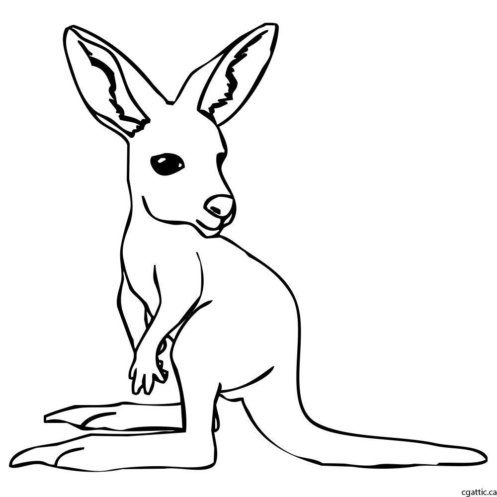 Kangaroo Cartoon Drawing In 4 Steps With Photoshop Kangaroo Drawing Cartoon Drawings Cute Cartoon Drawings
