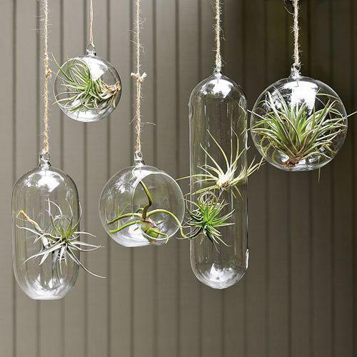 vidros diferentes | Vasos decorativos para ambientes mais modernos