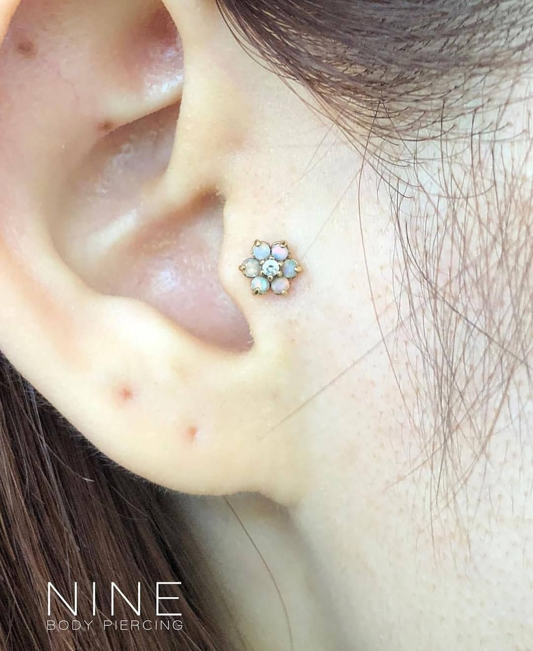 Yellow nose piercing  Healed Tragus with Anatometal Yellow Gold mm Flower End Cubic