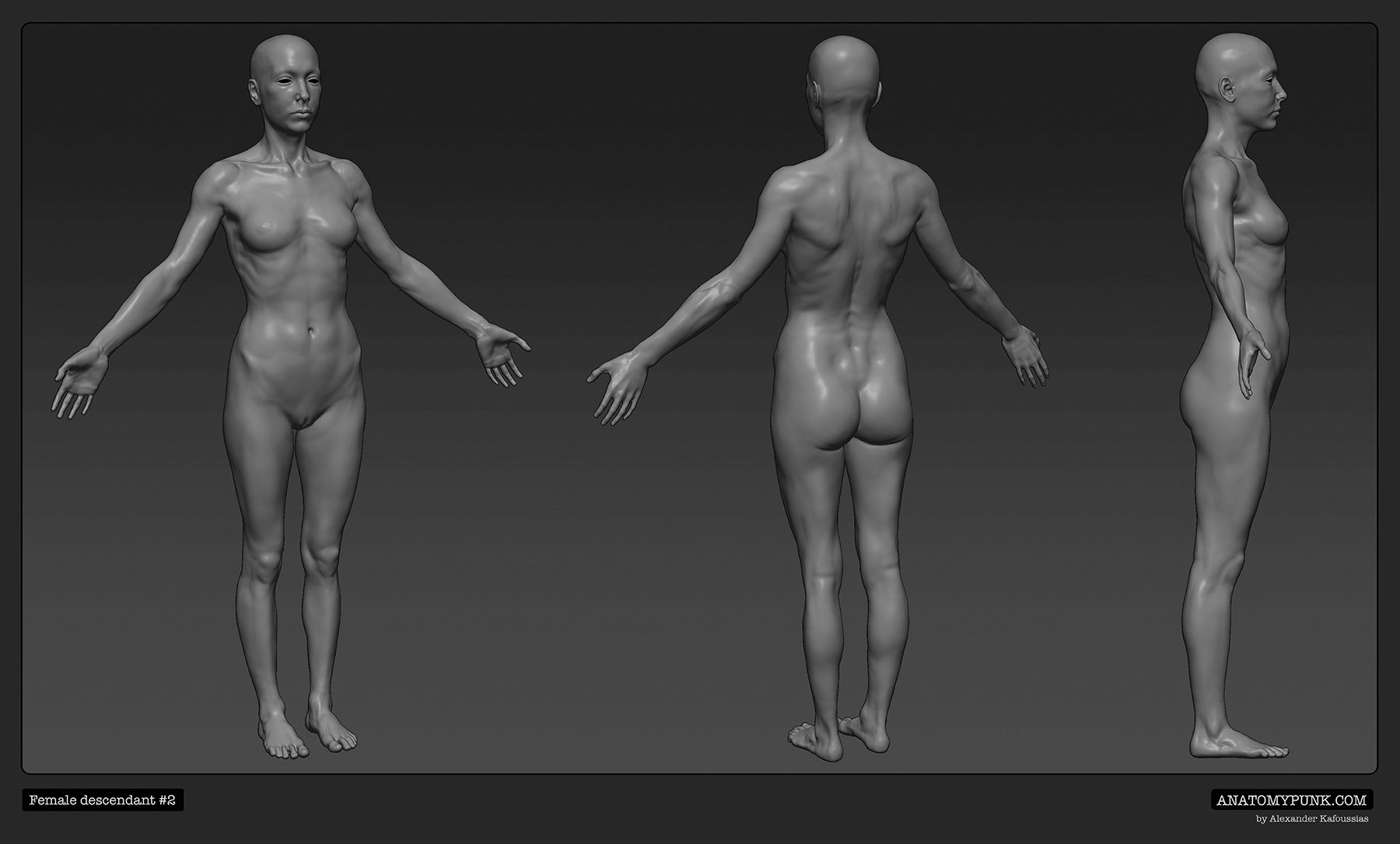 Female Descendant 2 By Alexander Kafoussias Anatomypunk