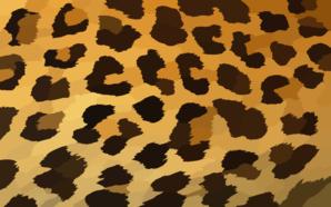 Leopard Print Background X Clip Art Animal Prints Pattern Leopard Print Background Print