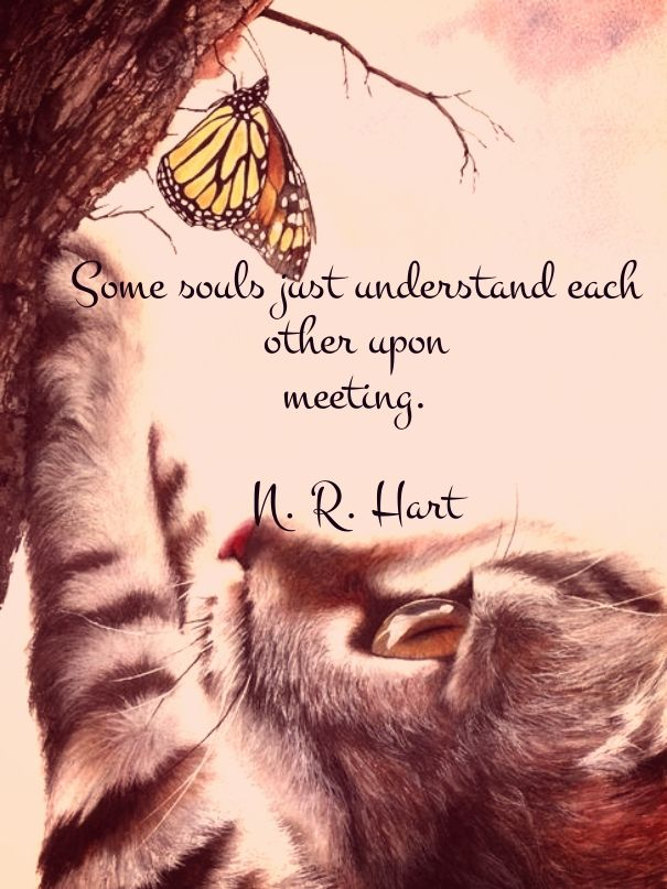 Image result for some souls just understand each other upon meeting