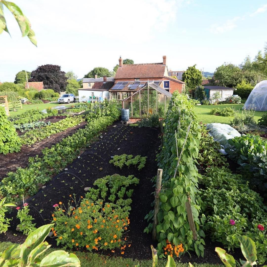 Dreams And Goals Charles Dowding Vegetable Garden 400 x 300