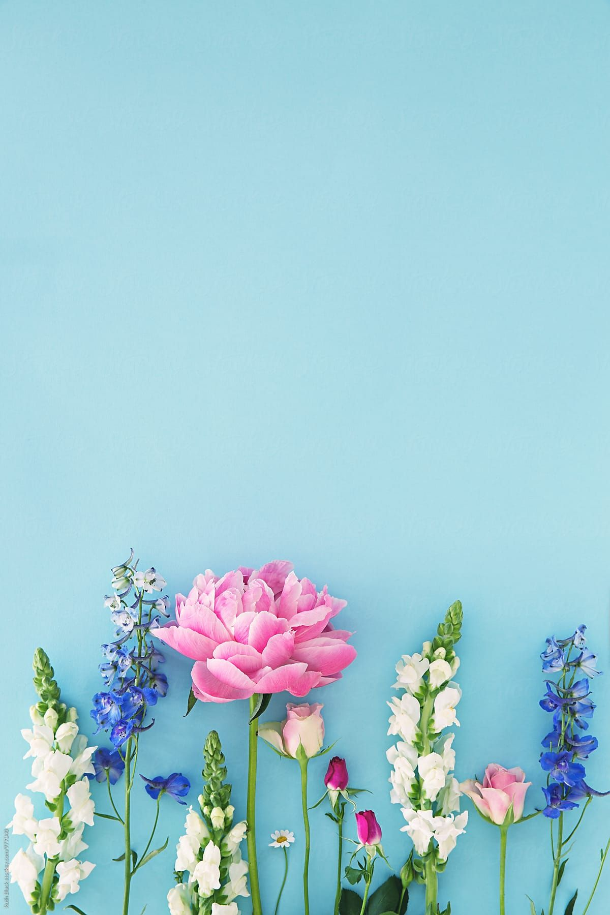 Country Garden Flowers Arranged On Blue Download this high