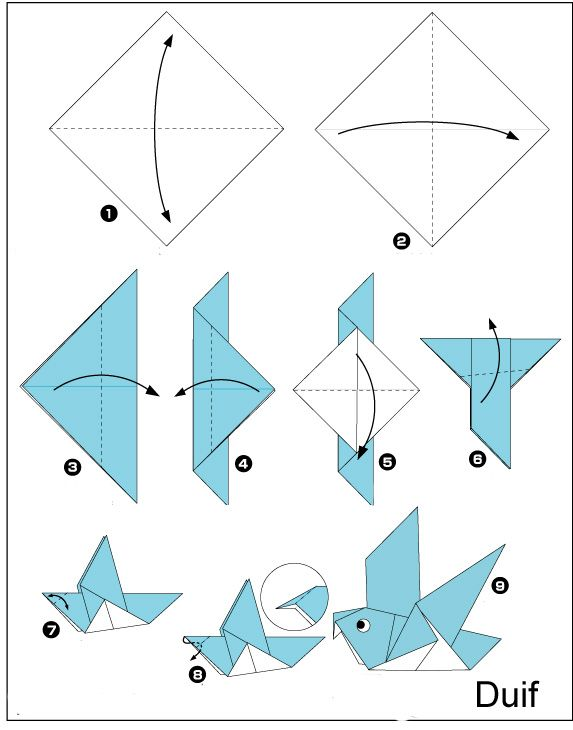 Origami Duif Vouwen Leuk Voor De Slimmeriken Knutselen