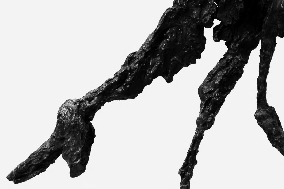 de-salva:      Alberto Giacometti - Le Chien (detail), 1951.  Photo by Mart Engelen  Alberto Giacometti: http://en.wikipedia.org/wiki/Alberto_Giacometti