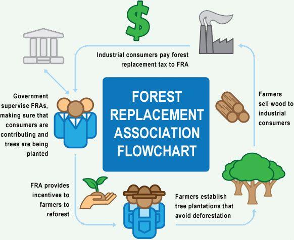 forest replacement association flowchart reforestation. Black Bedroom Furniture Sets. Home Design Ideas