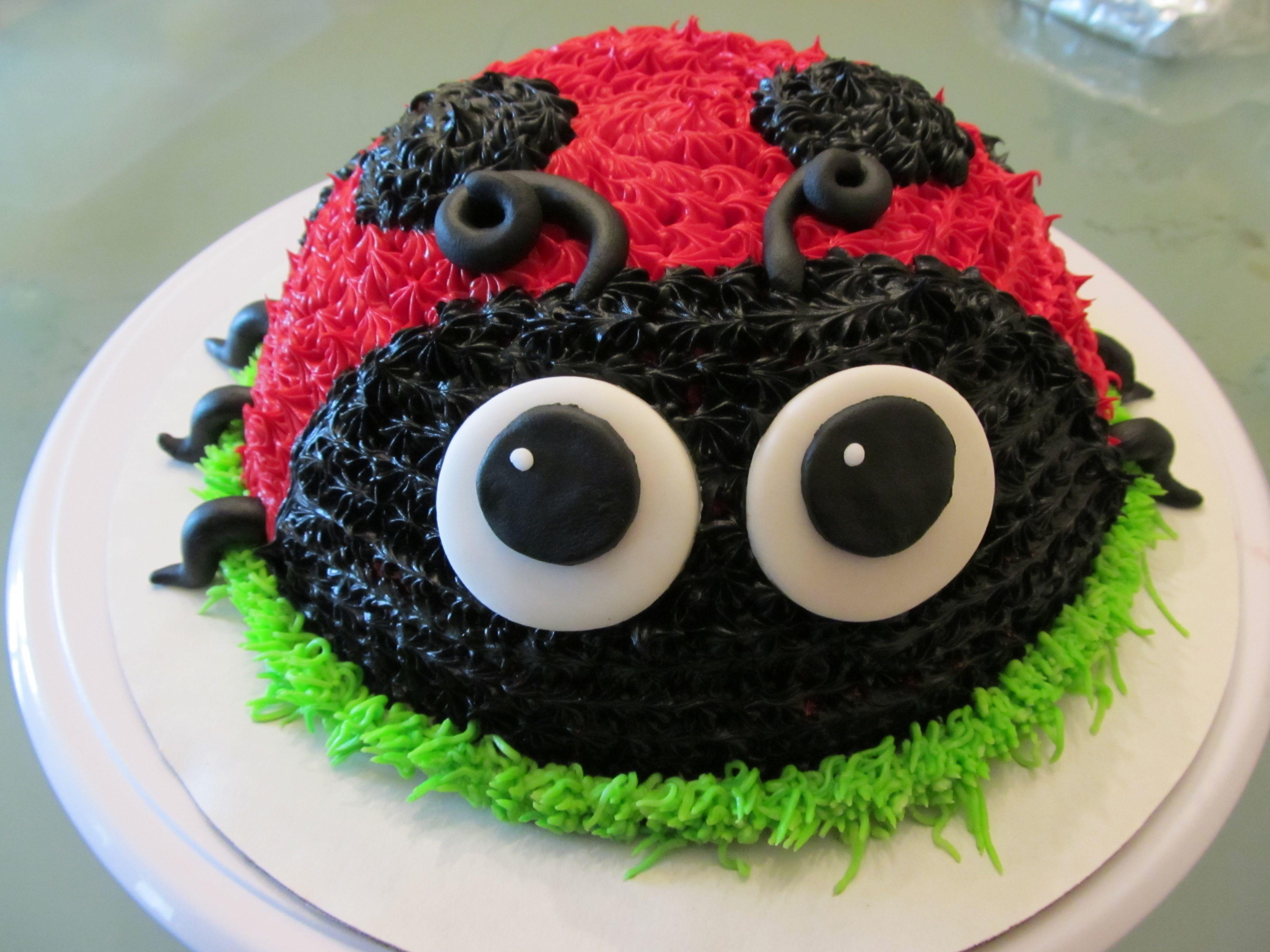 Magnificent Lady Bug Cake First Birthday Lady Bug Birthday Cake Ladybug Funny Birthday Cards Online Kookostrdamsfinfo