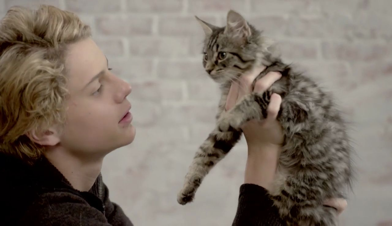 Rufus 2: Jace Norman Loves Kittens And Those Cats Are Too Cute With Jace.