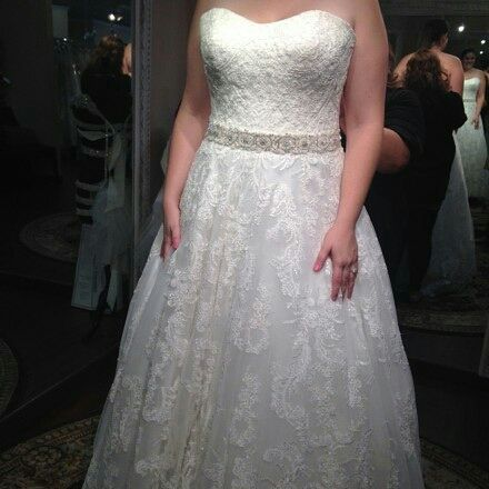 Elegant plus size wedding gowns can be created for brides of all shapes & sizes. Custom designs & replicas at www.dariuscordell.com