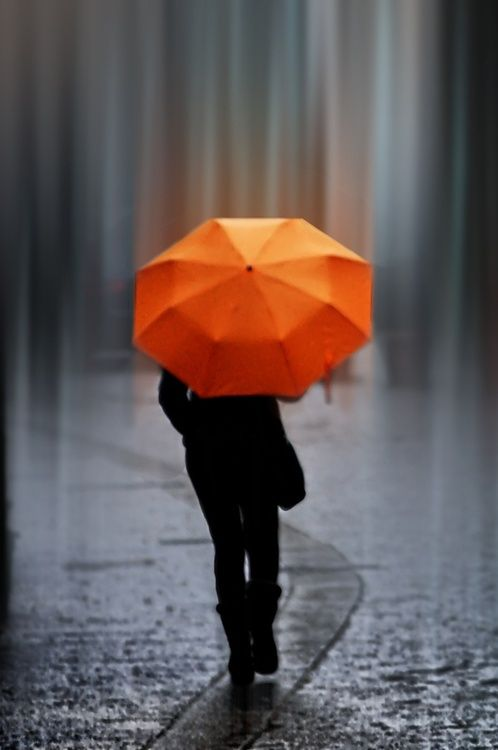 Orange Umbrella Color Anomaly Orange Umbrella Rainy Days