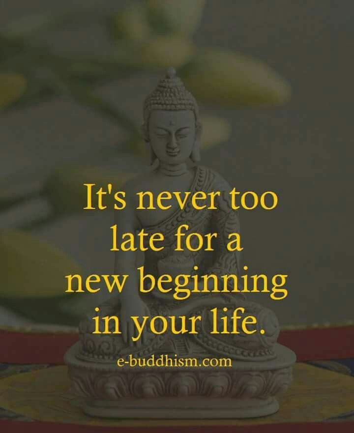 Pin By Padma Sharma On Buddha Pinterest Quotes Life Quotes And