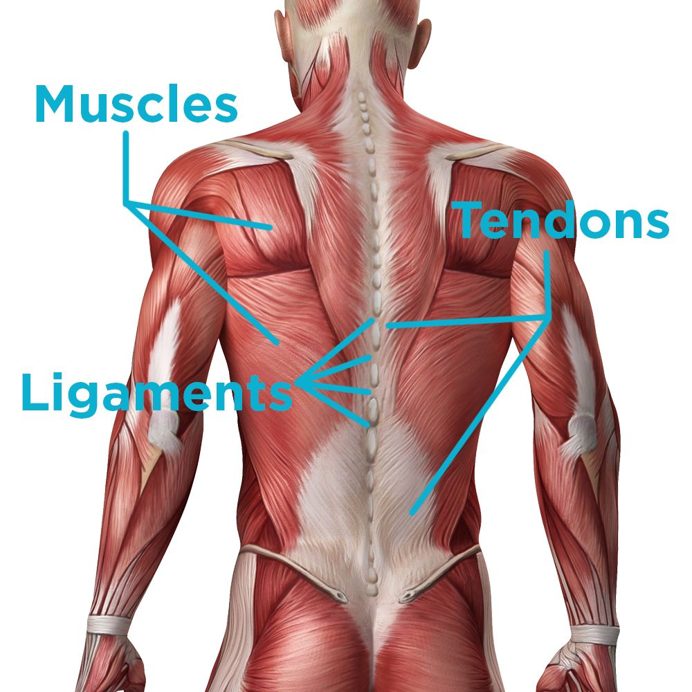 Home Remedies For Pulled Upper Back Muscle