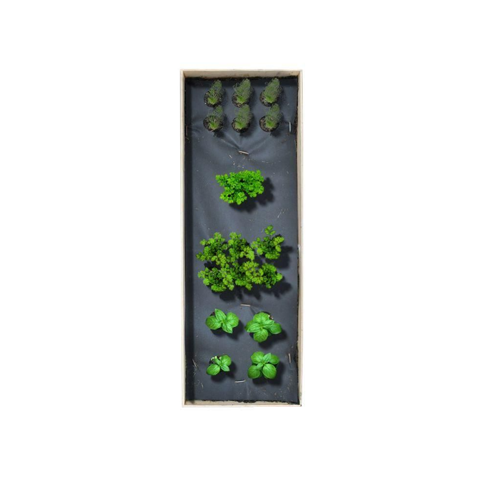 Home garden kit   in x  in Patio Raised Garden Bed Grow Box Kit with