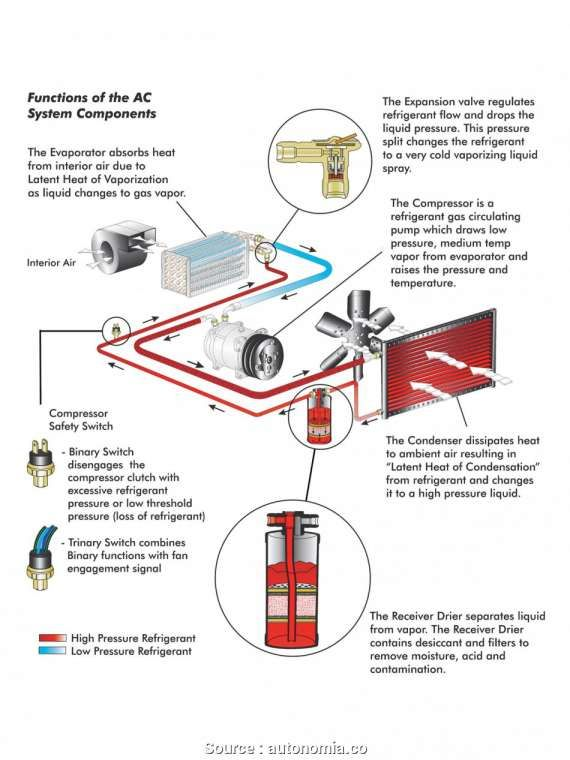 16+ Car Thermostat Wiring Diagram - Car Diagram - Wiringg.net | Thermostat  wiring, Electrical diagram, ThermostatPinterest
