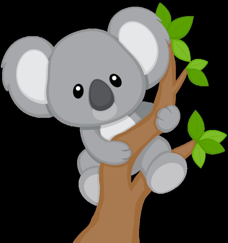 Чудесного, коала картинки для детей