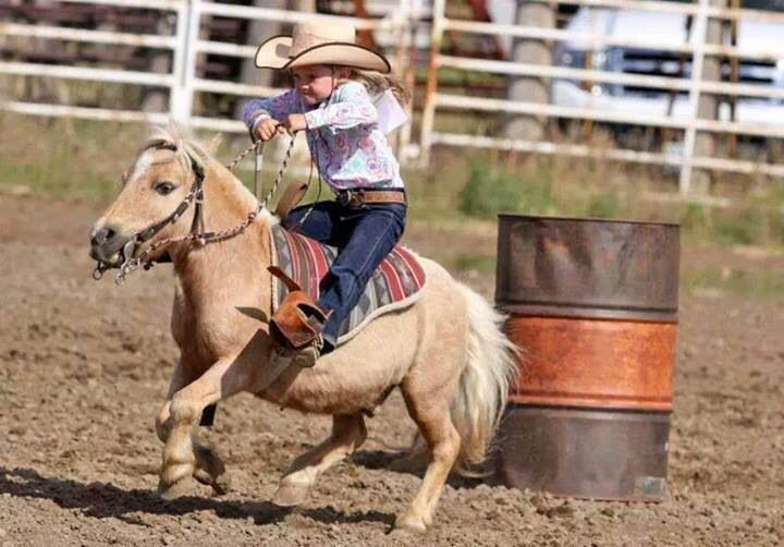This is the cutest freaking thing I have ever seen!!!!!!! Little girl  barrel racing miniature horse 779dcce0715c