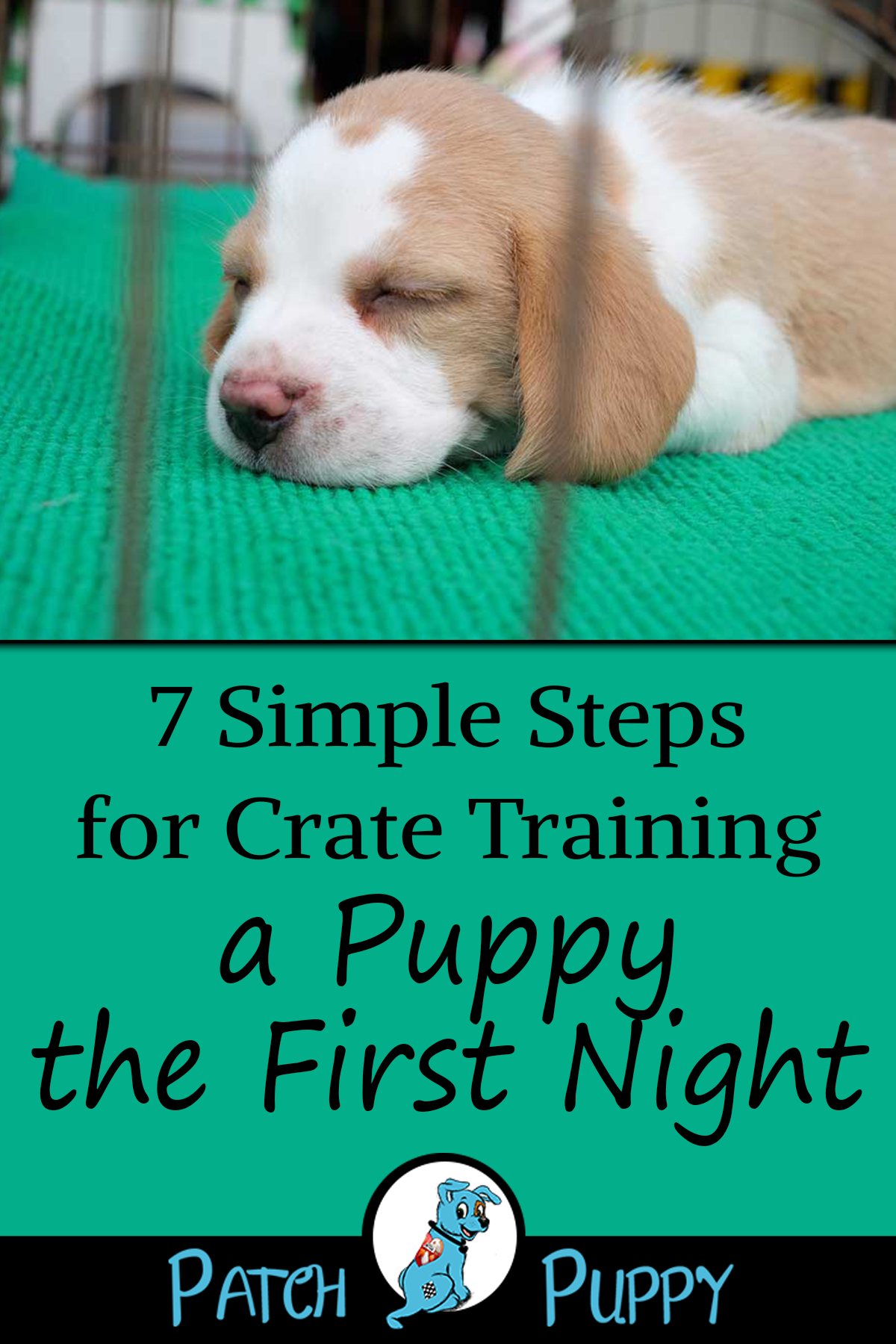 7 Simple Steps For Crate Training A Puppy The First Night Patchpuppy Com Crate Training Puppy Crate Training Puppy Schedule Kennel Training A Puppy