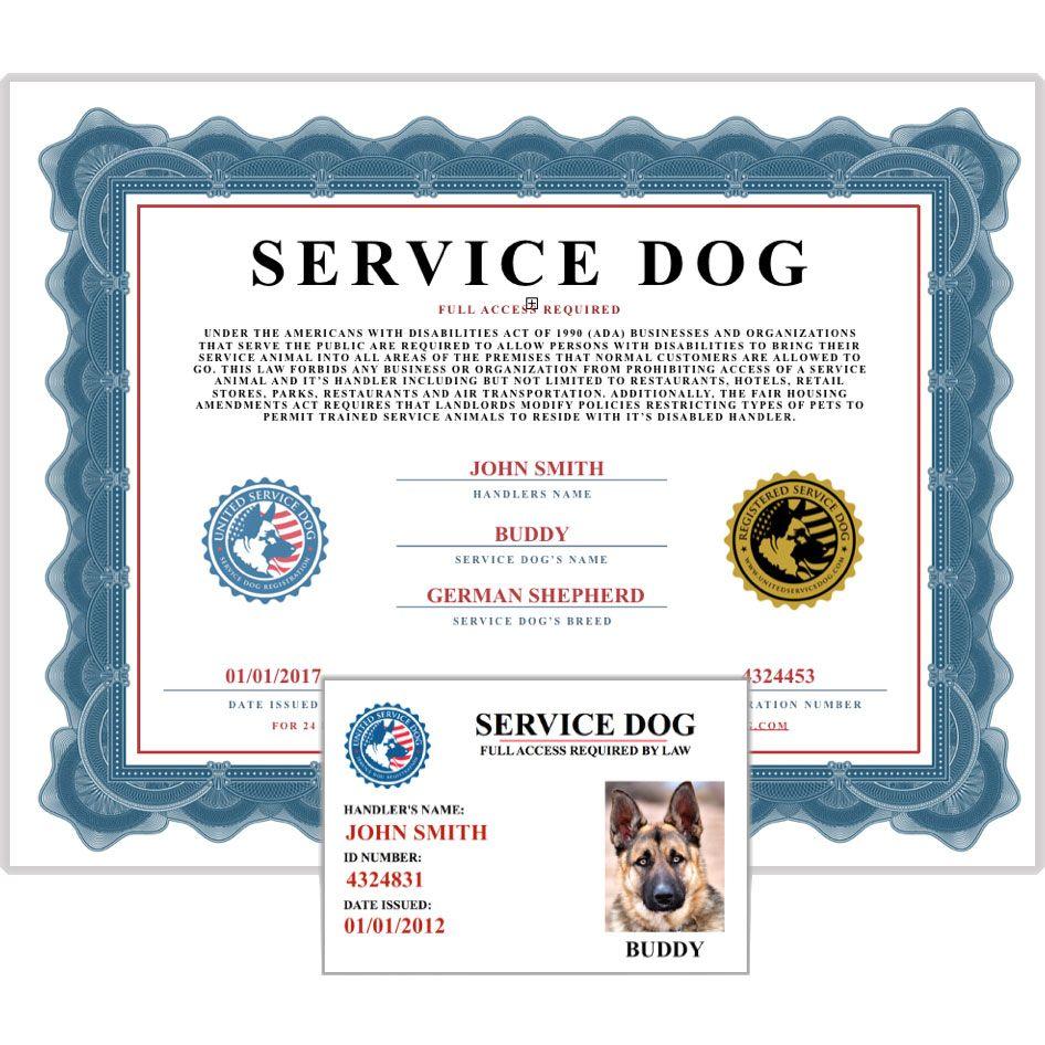 Service Dog Document Kit Service dogs, Emotional support