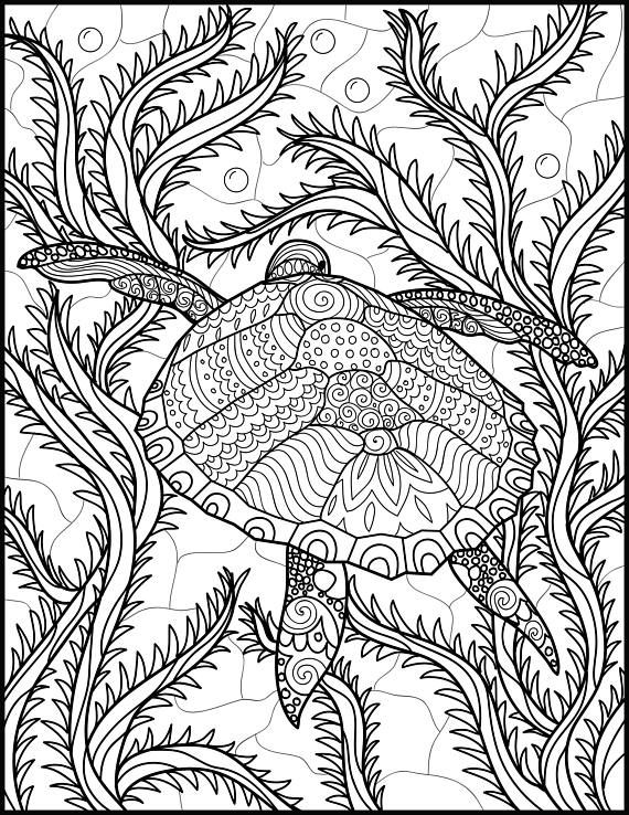 2 Adult Coloring Pages -Animal Coloring Page- Printable Coloring ...