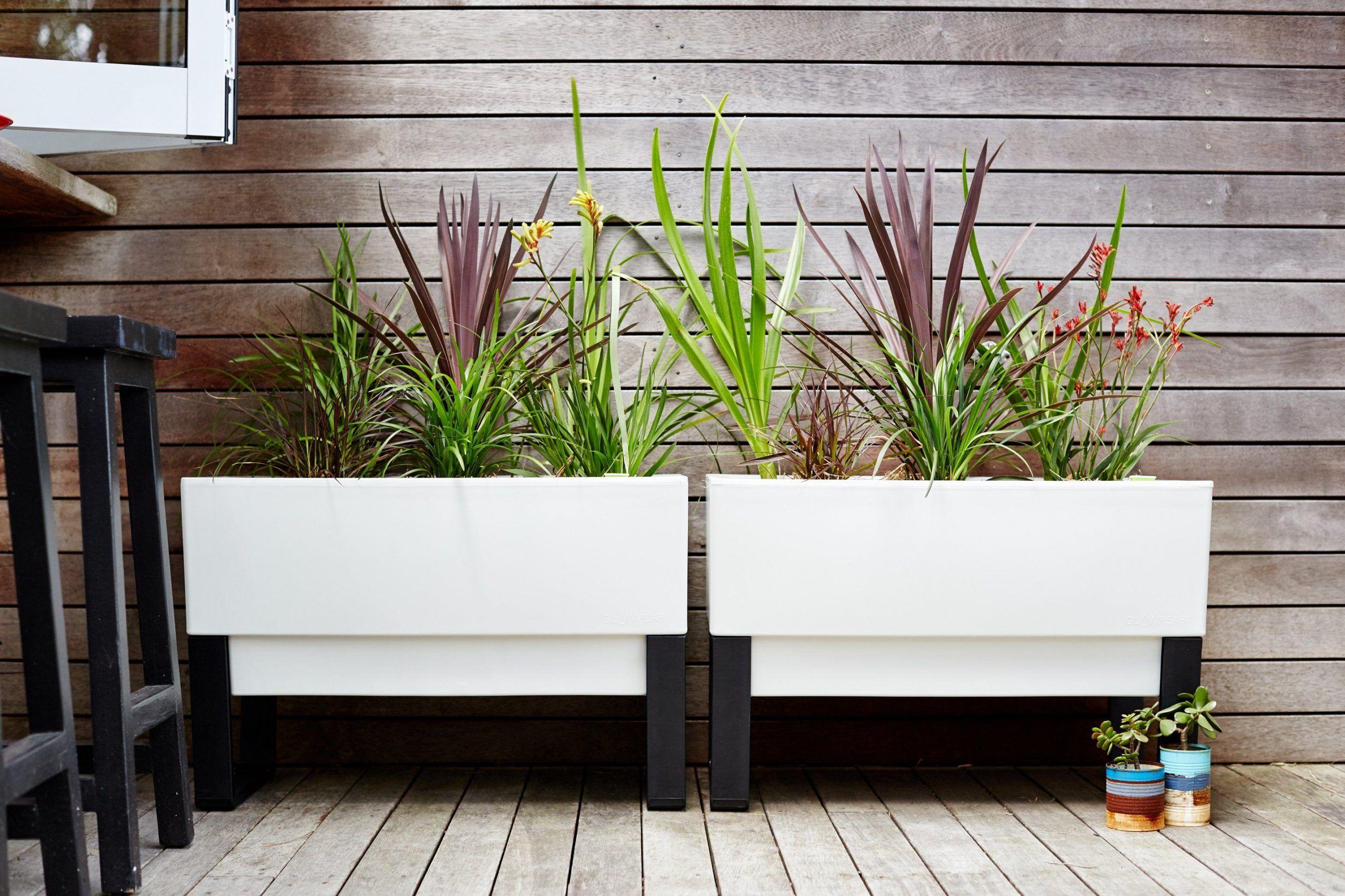 Self Watering Urban Garden by Glowpeargarden