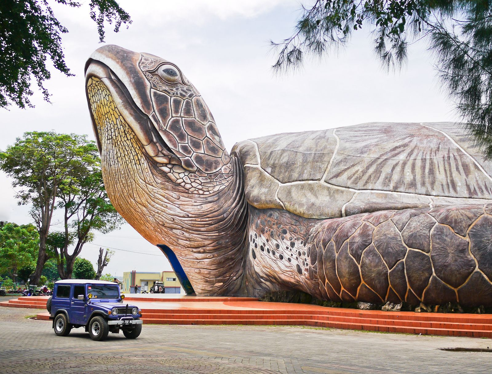 The biggest turtle in the world 38