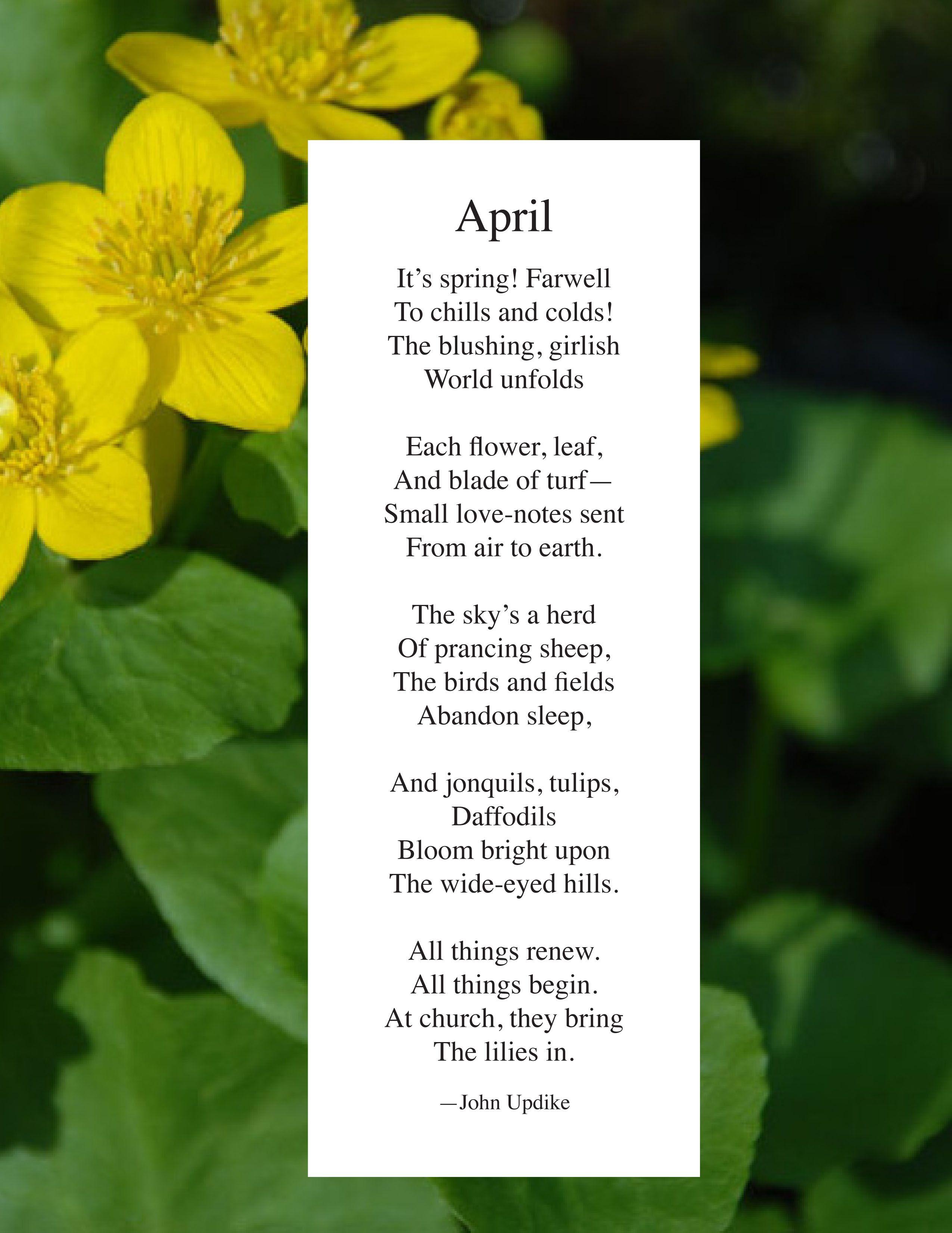 John Updike | April | April poems, Poems, Childrens poems