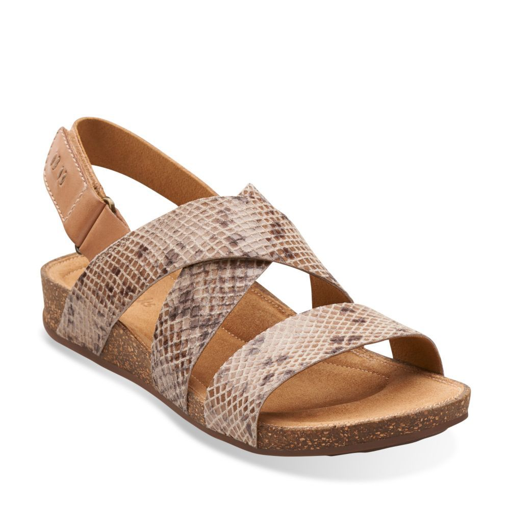 Perri Dunes Taupe Snake Suede - Wide Shoes for Women - Clarks® Shoes -  Clarks