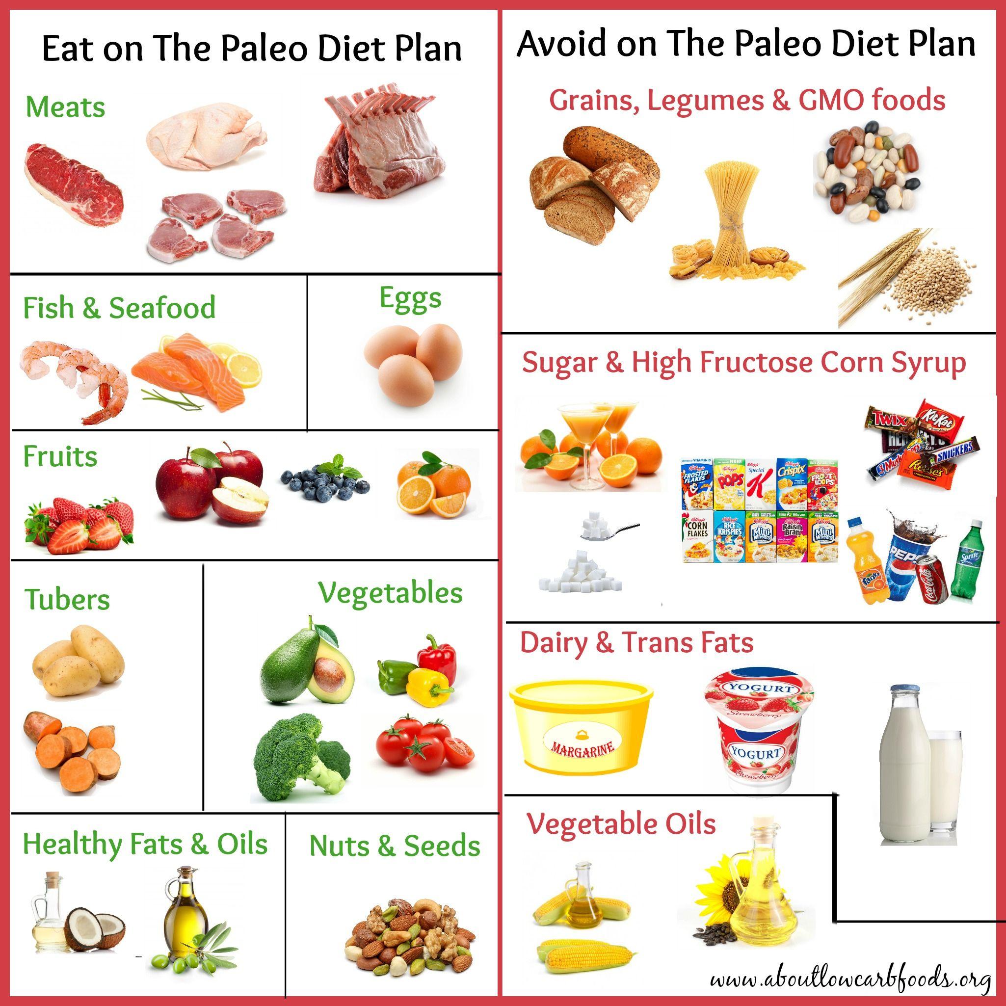 foods in paleo diet