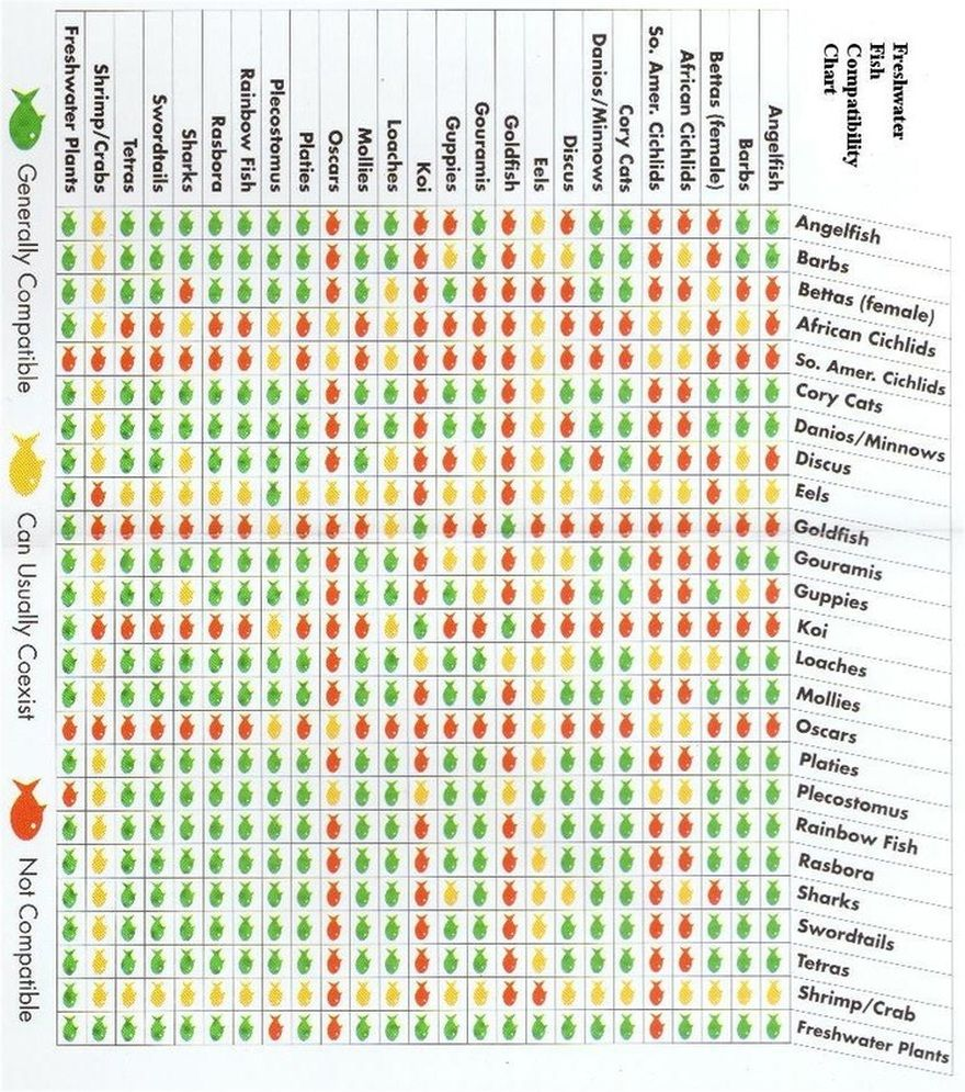 Fish Compatibility Chart Freshwater Aquarium Plants Planted Tropical Tanks