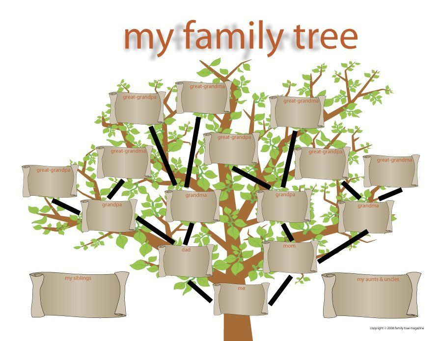 family tree template 11 FAMILY TREE Pinterest Family trees - family tree chart template