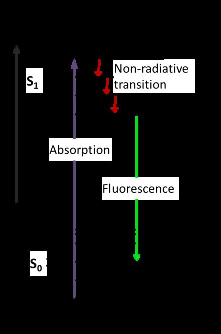 Jablonski diagram wikipedia movies pinterest diagram and movie jablonski diagram wikipedia ccuart Gallery