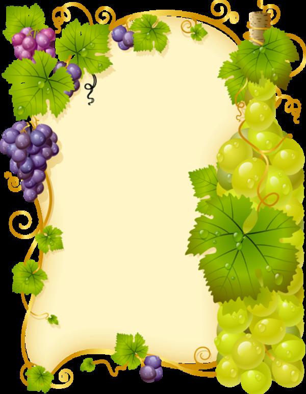 Parchment Et Labels Page 17 Flower Frame Grapes Vine Drawing