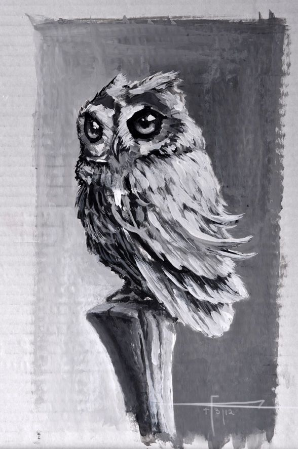 Owl Speed Painting by Imaginesto Pinned by www.myowlbarn.com