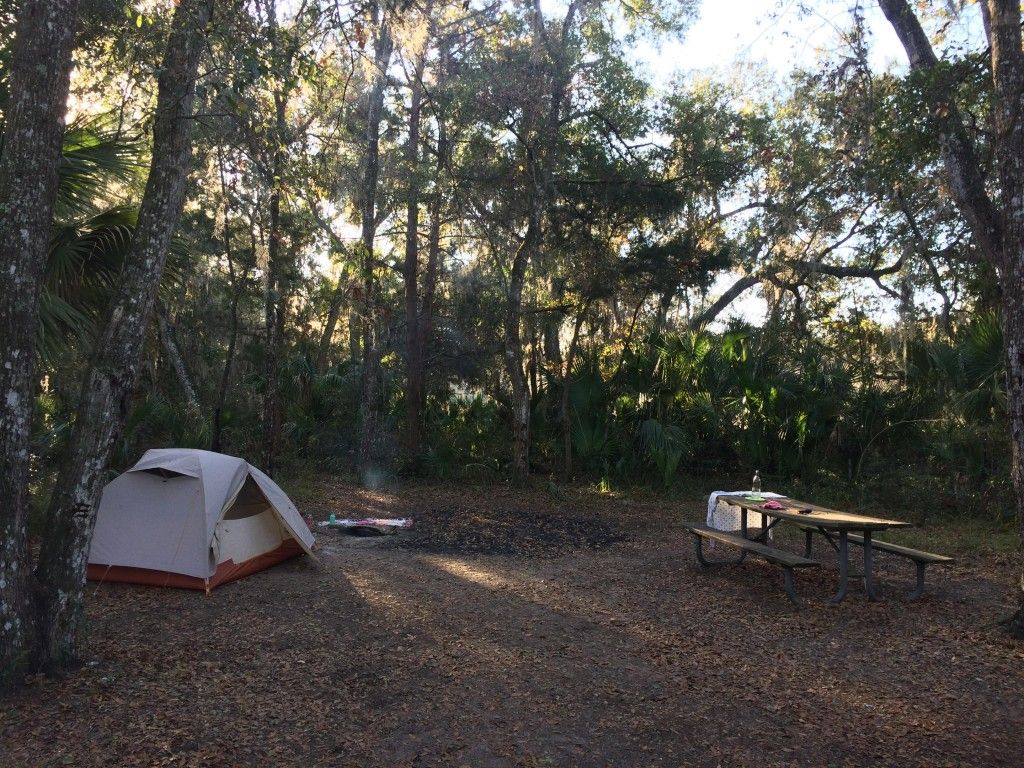 Inexpensive Forest Camping Near St Augustine Florida Https Freecampsites Net Matanzas State Forest Primi Camping New Zealand Florida Camping Florida Travel