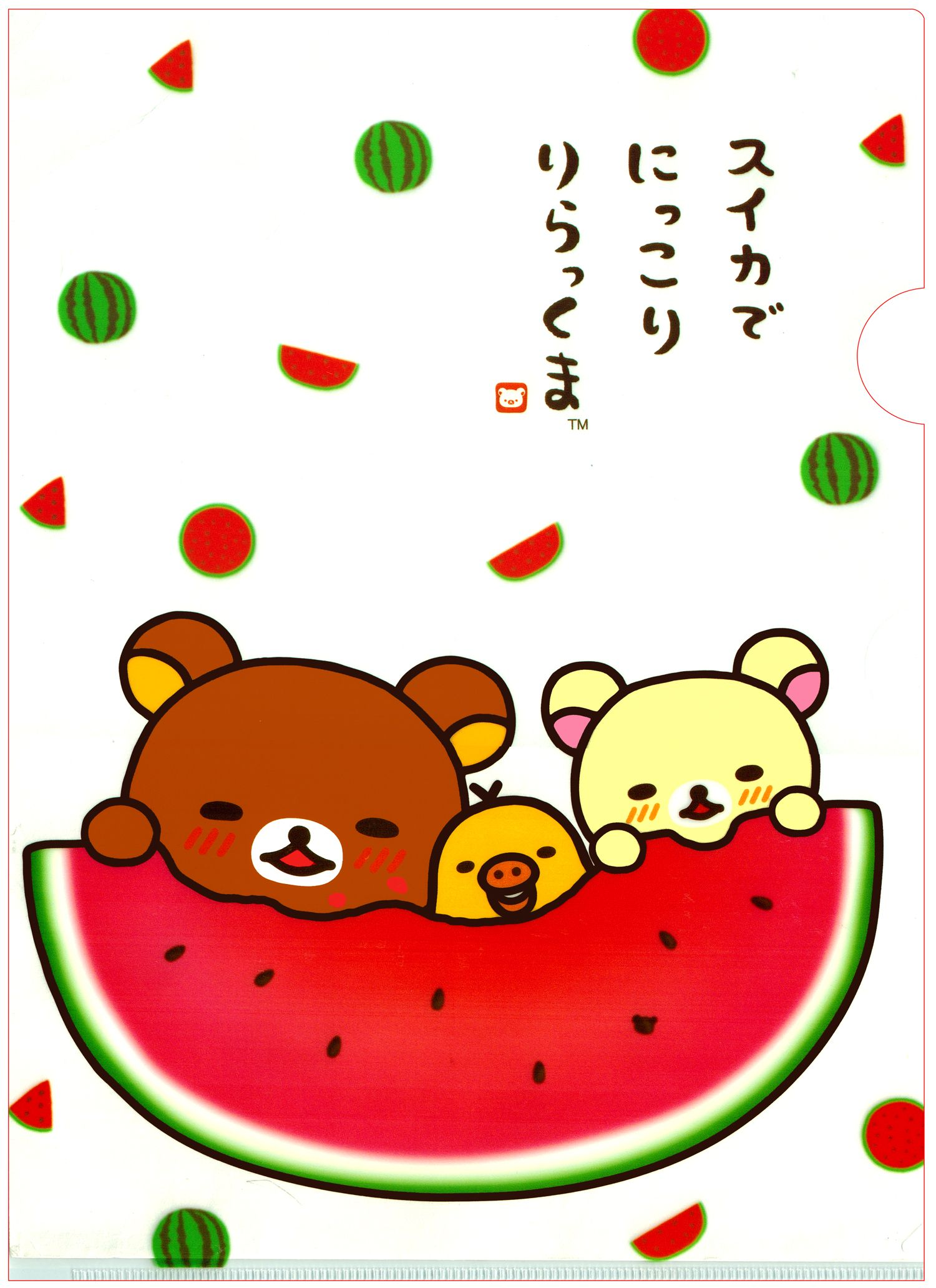 Sanx Rilakkuma Summer Watermelon File Folder Rilakkuma