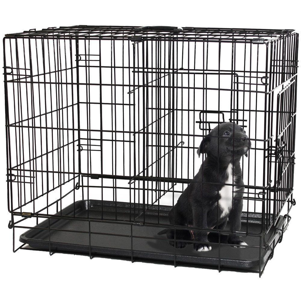 #Medium #Dog #Crate #Metal #Kennel #Double #Door #Folding #Pet Crate 30'' #Dividing #Panel  | #eBay - https://t.co/FIsRA7amEQ