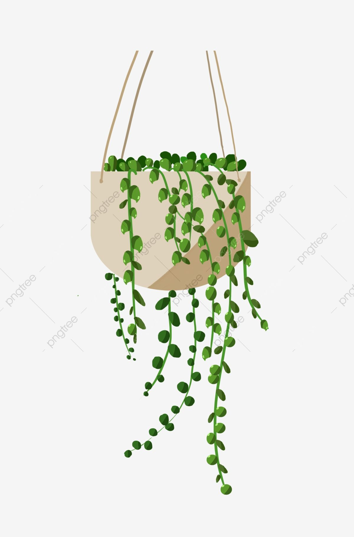 Download This Green Hanging Plant Flower Pot Small Green Leaves Cartoon Lover Tear Pot Potted Illustration Hanging Flower Pots White Flower Pot Flower Border