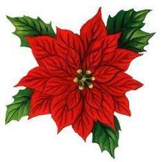 Dibujo De Flor De Noche Buena Buscar Con Google Christmas