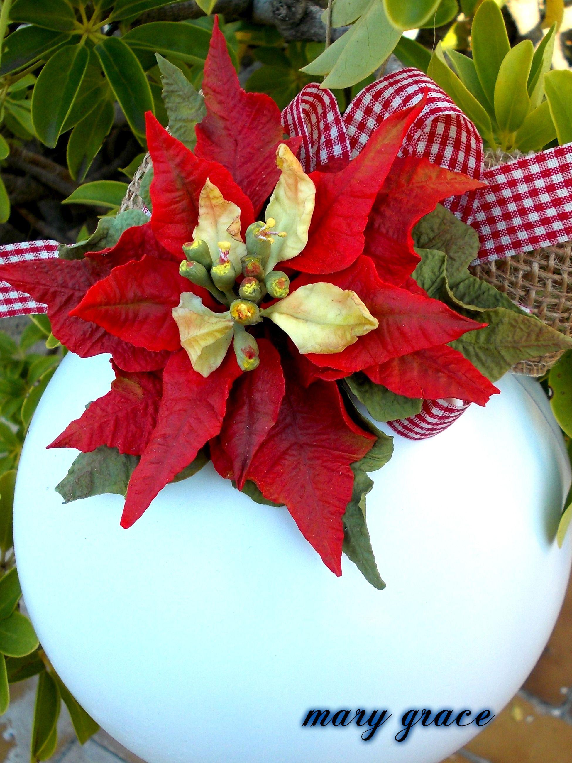 Stella Di Natale In Pasta Di Mais.Stella Di Natale In Porcellana Fredda Stella Di Natale Porcellana