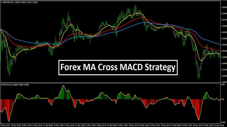 Forex Ma Cross Macd Strategy Mt4 Learning Forex Trading Online