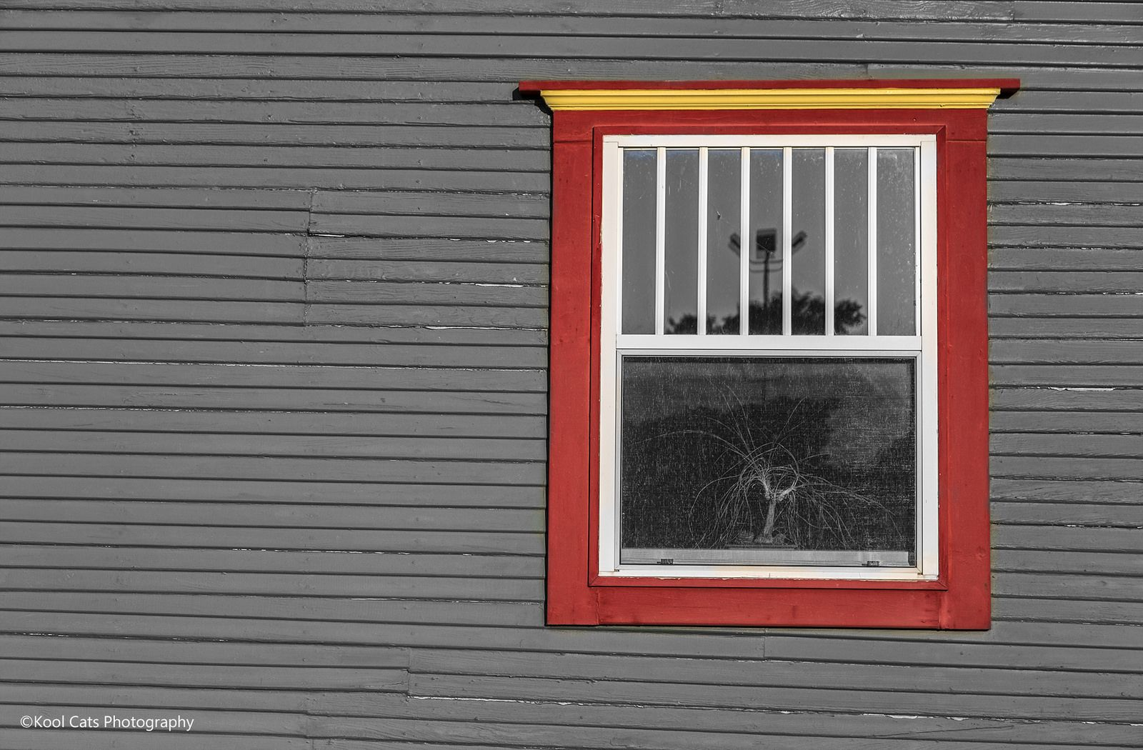 https://flic.kr/p/wrwFmm | The Red Window_BW | Photo taken in a back alley of Oklahoma City.