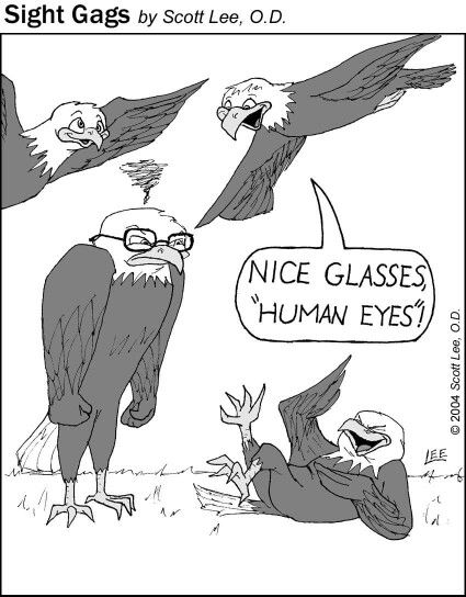 Human Eyes Eagleeyes Role Reversal Optometry Humor Eye Jokes Animal Jokes