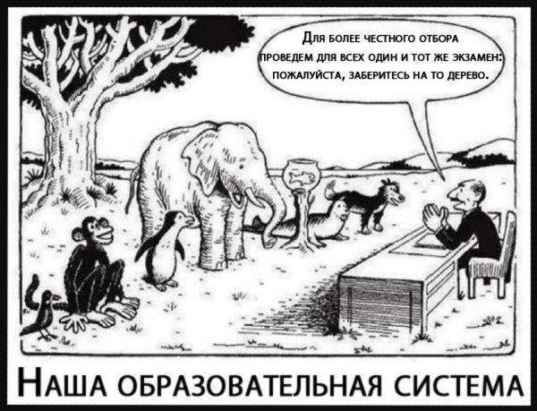 Pin By Arisha Sneg On Memy In 2020 Education System Teacher Humor