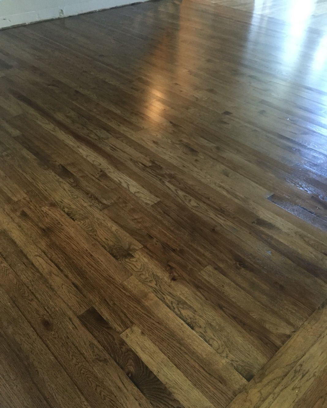 3 In Hickory Wood Floor Jacobean Minwax Stain Minwax Satin Poly Oil Based 2 Coats Hickory Wood Floors Hickory Flooring Hickory Hardwood Floors