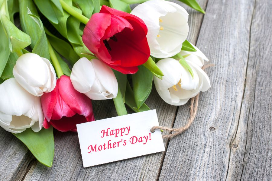 What Flower Type Is Your Mom Petal Talk Mother S Day Activities Mothers Day Flowers Mother S Day